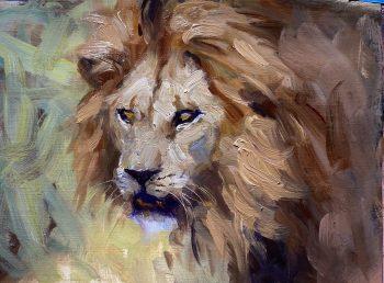 male lion oil painting